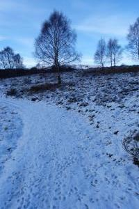 Loch Kinord - a walk one day (3)