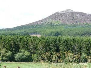 Bennachie.. Again