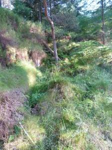 Bennachie - George Sims and James Mairs Quarry 5