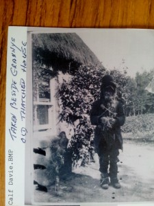 1920 Calf Davey a traveller at North Nib - Woodside