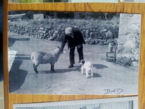 1960 Alexander Esson - pet sheep and Mitzie the dog