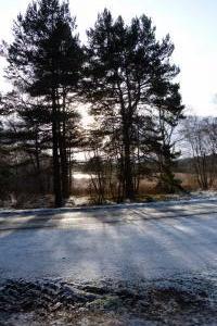 Loch Kinord - a walk one day (2)