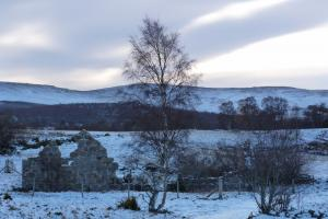 Loch Kinord - a walk one day (7)