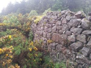 Bennachie Wall at Boghead of Tullos